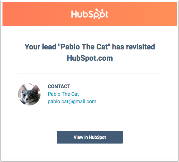 lead-revisit-email-notification